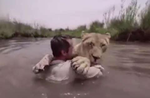 """Kevin Richardson e il """"bagnetto"""" con la leonessa"""