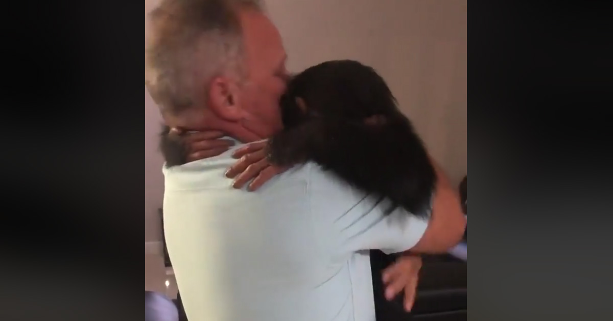 Respinto dalla mamma: cucciolo di scimpanzé abbraccia le persone che l'hanno crescuto