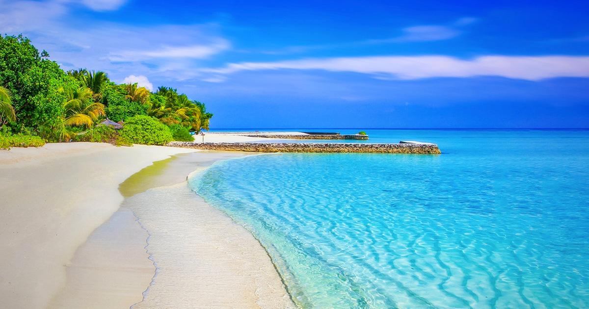 Vorresti lavorare alle Maldive? L'annuncio di lavoro fa il giro del web
