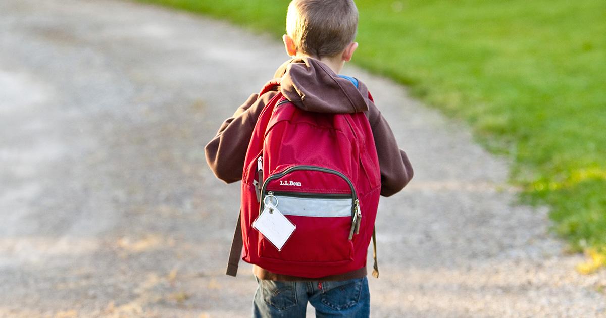 Zaino vs trolley cosa è meglio per i figli a scuola