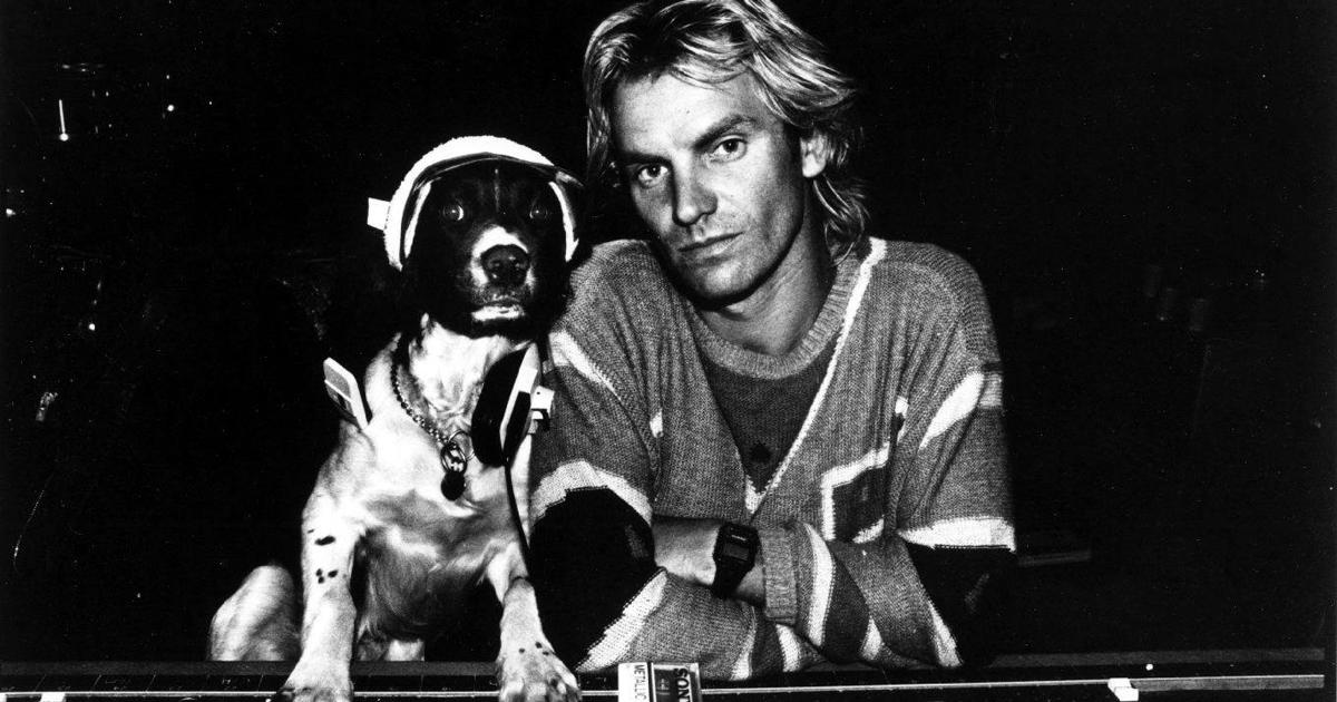Il nuovo tour di Sting passerà anche dall'Italia, ecco le date