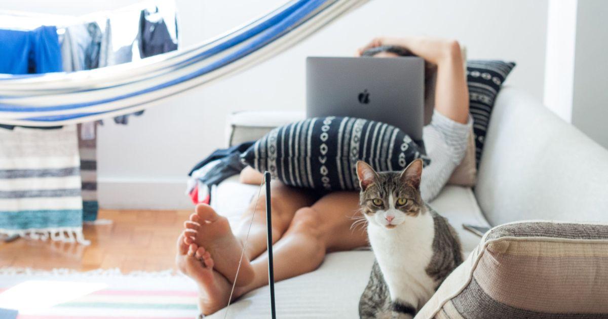 La ginnastica da divano: l'allenamento valido per i più pigri