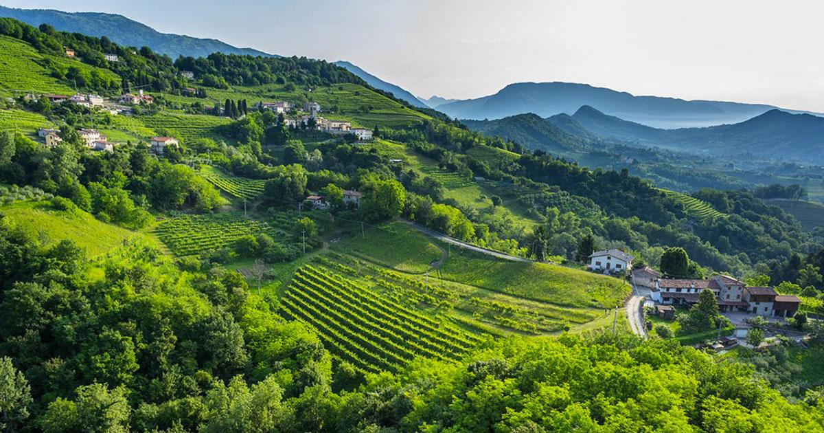 Le colline del Prosecco sono state dichiarate Patrimonio dell'Umanità dall'Unesco