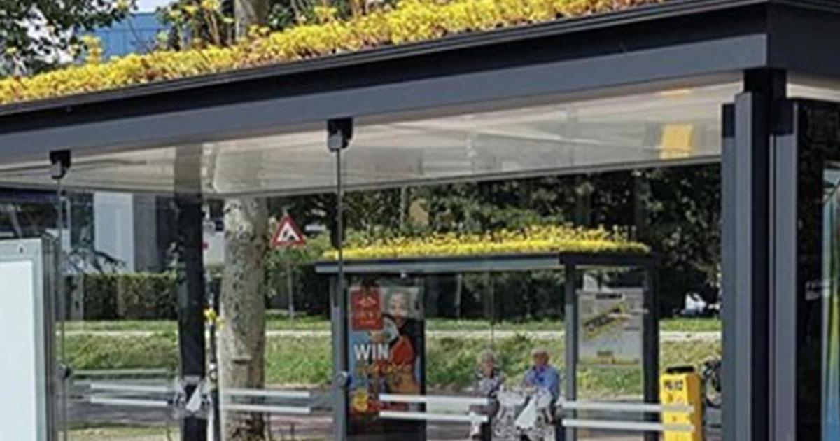 In Olanda le fermate degli autobus sono state ricoperte da piante per aiutare le api