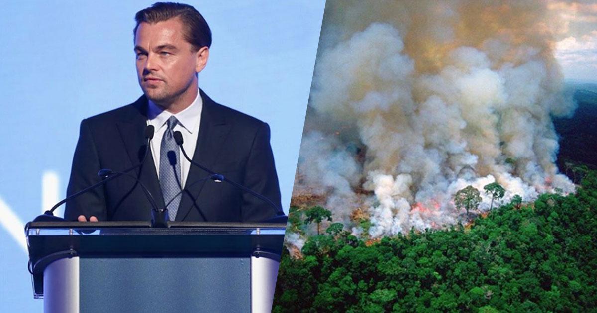 DiCaprio dona 5 milioni di dollari per l'Amazzonia e lancia una raccolta fondi