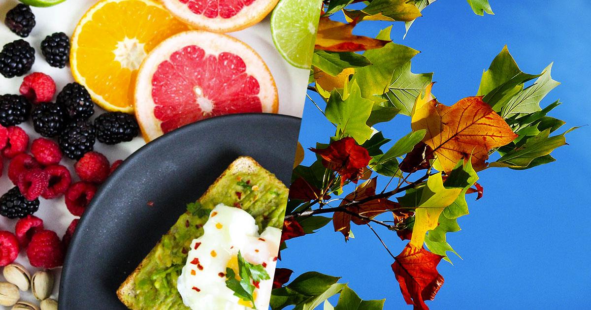 Prime freddate in arrivo: ecco 7 cibi per restare in forma in autunno