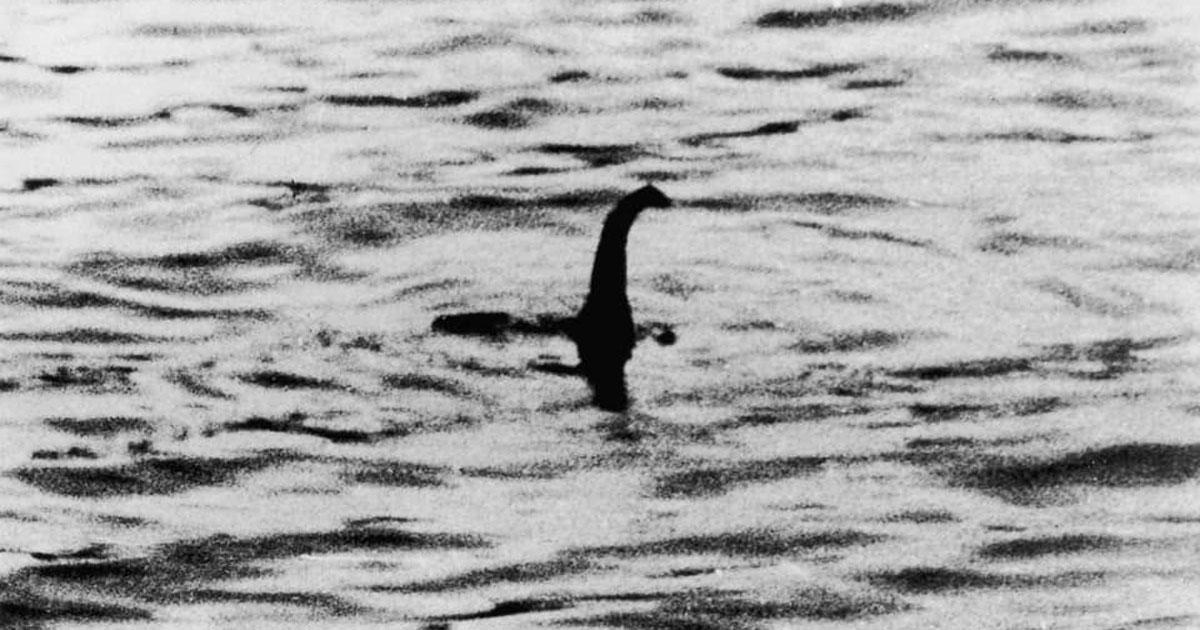 Hanno ritrovato lo scheletro del mostro di Loch Ness? Ecco la foto