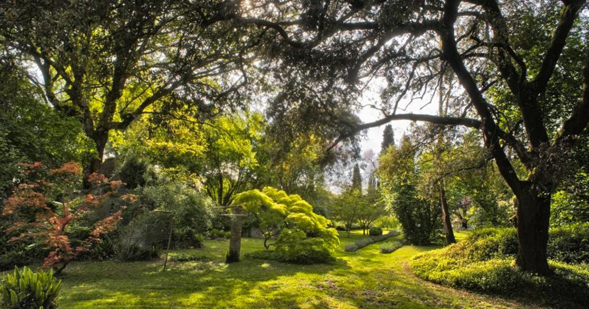 Gita al Giardino di Ninfa: quando andare