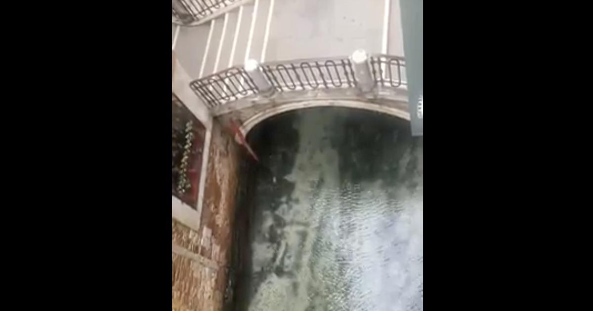 Dopo molti giorni senza smog a Venezia le acque tornano ad essere limpide