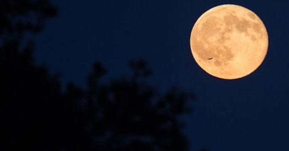 Luna del cervo: in arrivo l'eclissi della luna piena di luglio