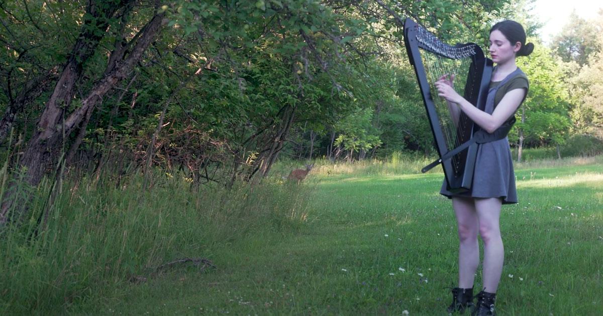Suona l'arpa nel bosco ma riceve una visita inaspettata: il video è stupendo