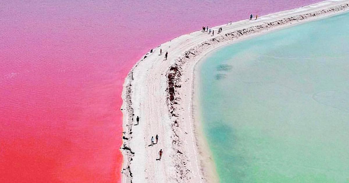 La laguna rosa si trova in Messico ed è un vero spettacolo della natura
